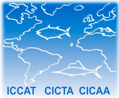 LogoICCAT-med