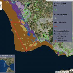 Alegaciones a la creación de la Reserva Marina de Interés Pesquero en Conil-Sancti Petri.