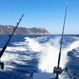 Código de conducta pesca responsable
